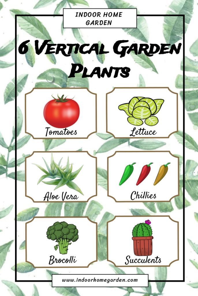 6 vertical garden plants