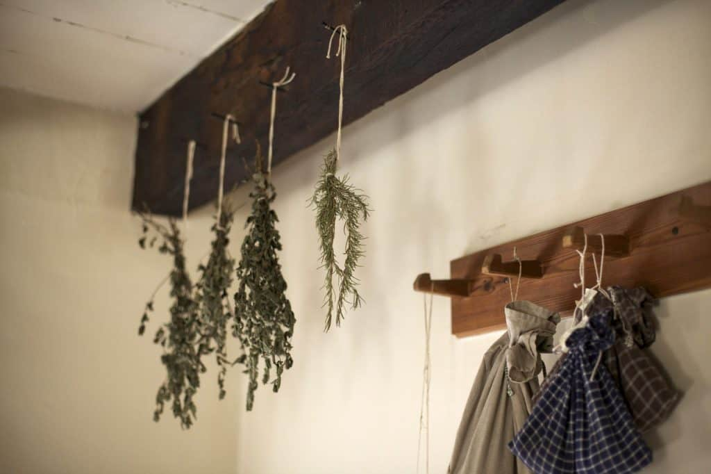 herbs drying by hanging