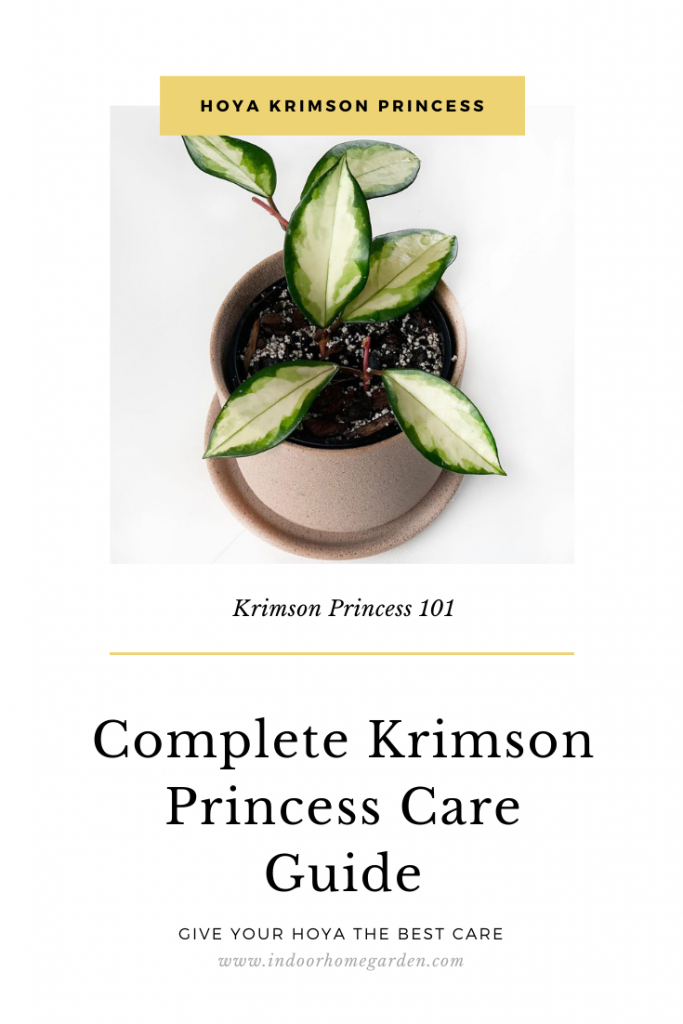 Krimson princess care guide image for pinterest