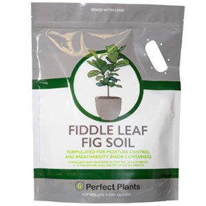 Fiddle Leaf Fig Soil by Perfect Plants